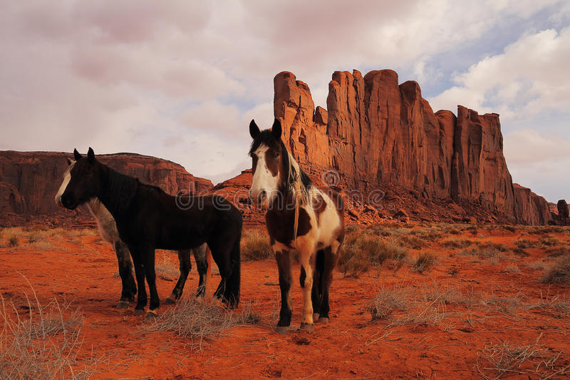 Red Navajo Sandstone of Monument Valley stock image