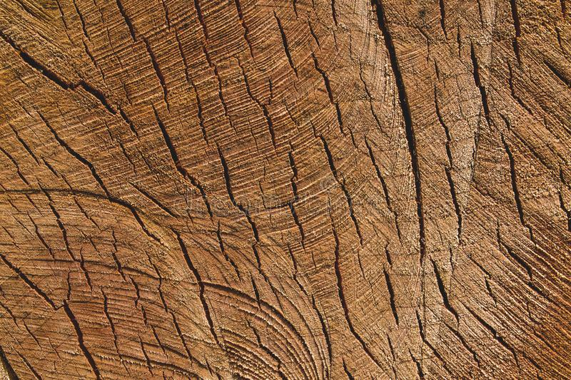 Red oak dry wood sawn woodworking tools. Dry wood sawn woodworking tools, wood for furniture production royalty free stock images
