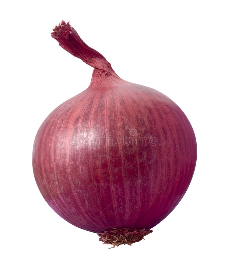 Red Oinion. Red Onion isolated on a white background. Isolation is on a transparent layer in the PNG format royalty free stock images