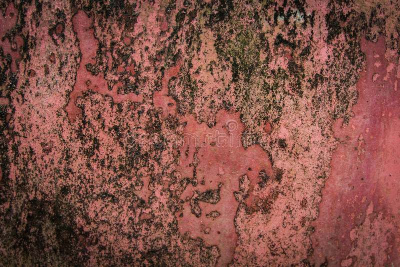 Red old cement background. And texture stock photos