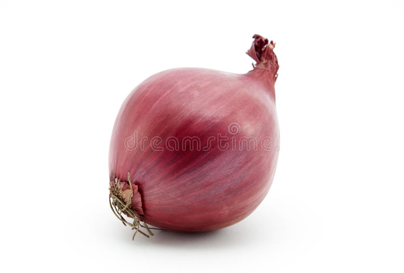 Download Red onion stock image. Image of whole, agriculture, onion - 17279299
