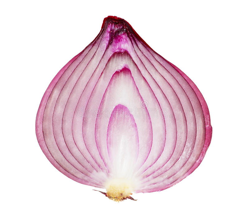 Download Red onion stock image. Image of object, healthy, halved - 21506353