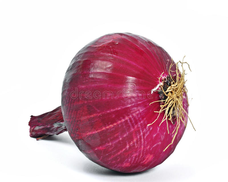 Red onion. On a white background royalty free stock photos