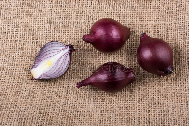 Red onion bulb cut in half on certain  background royalty free stock images
