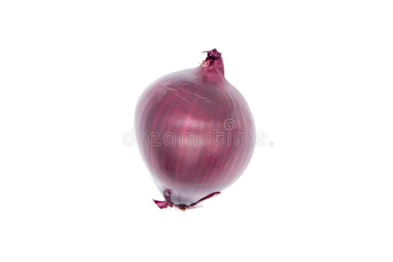Red onion bulb isolated stock images