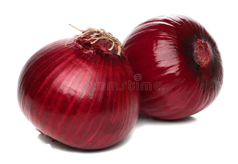 Download Red onion bulb isolated stock photo. Image of dieting - 32234444