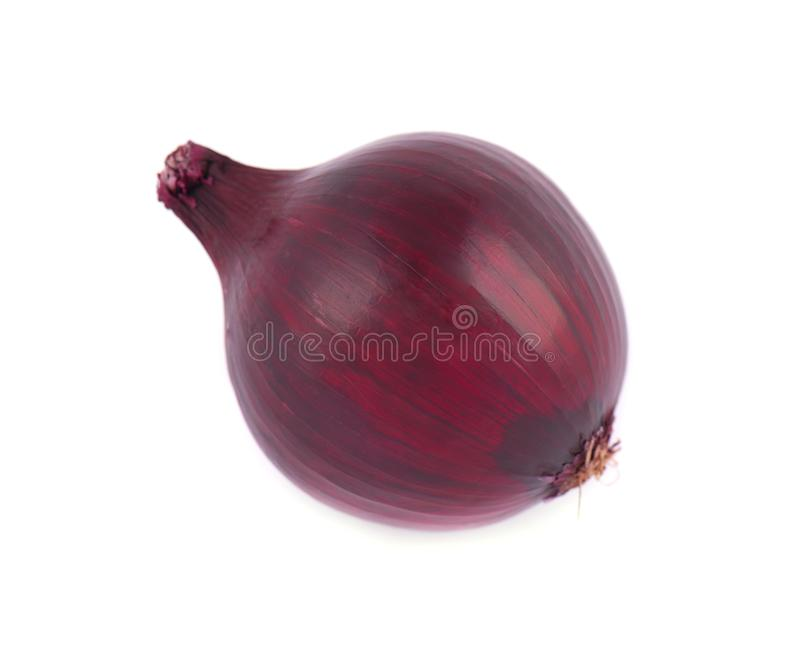 Red onion bulb isolated on white background. Close-up royalty free stock images