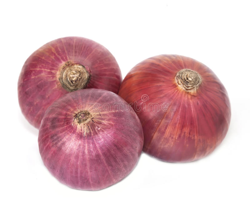 Red onion isolated. Three red onion isolated on white stock photography