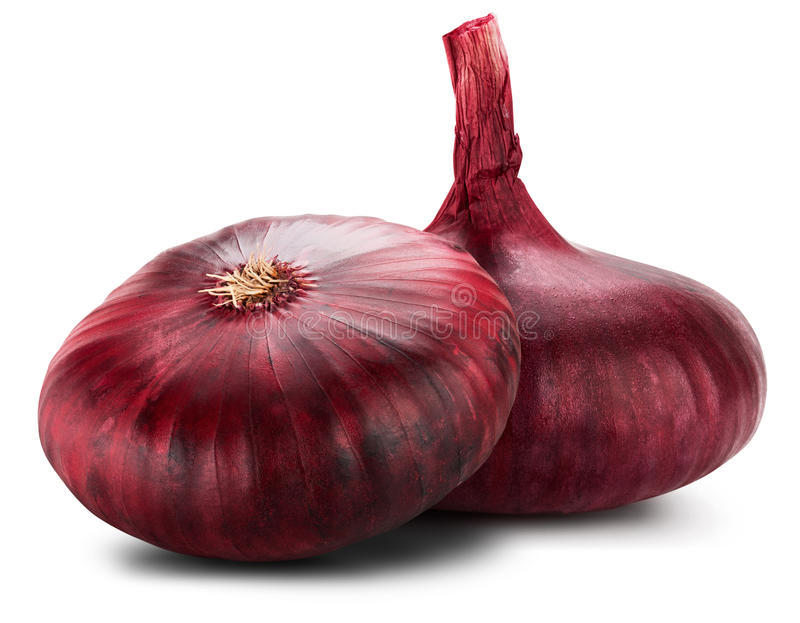 Red onion. Isolated on white background royalty free stock photography