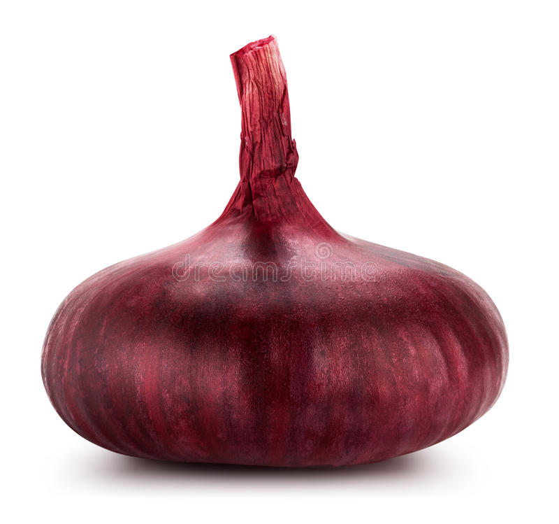 Red onion. Isolated on white background. Clipping Path royalty free stock image