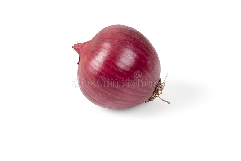 Red Onion Isolated On White royalty free stock image