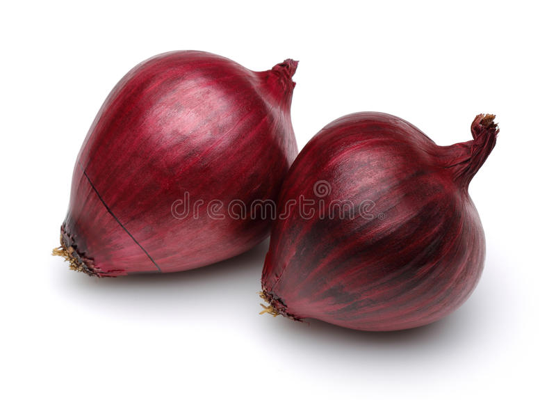 Red onion stock image