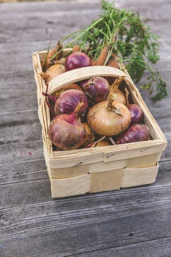 Red Onion on Rectangular Basket royalty free stock image