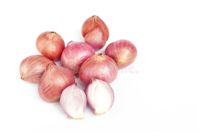 Red onions. On white background royalty free stock photography