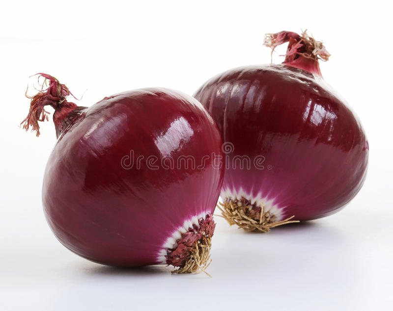 Download Red onions (allium) stock image. Image of homegrown, cuisine - 25456513