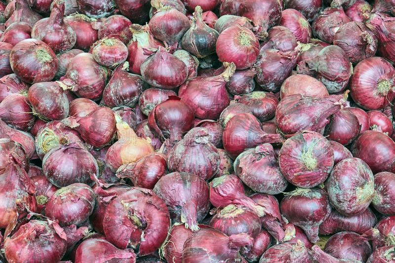 Red onions for sale. At a market stock images
