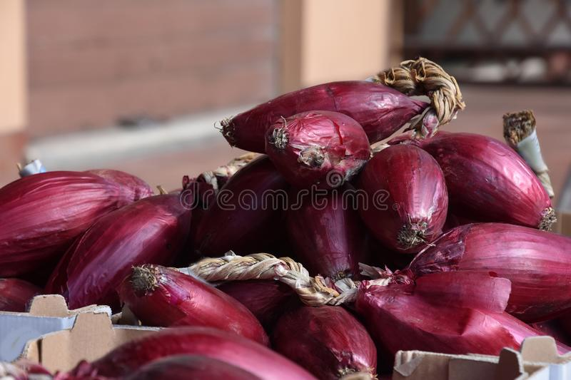 Red onions, a specialty of Tropea, Calabria. Red onions for sale in Tropea Calabria, a specialty of this region in southern Italy. Very special is the jam out of royalty free stock images