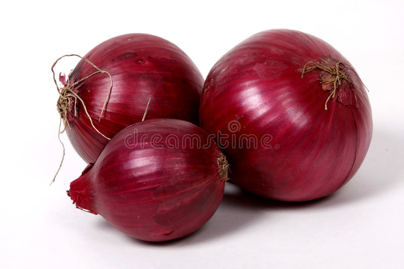 Red onions on the white background. royalty free stock images