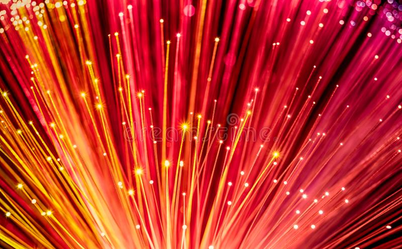 Red optical fiber network cable royalty free stock photos