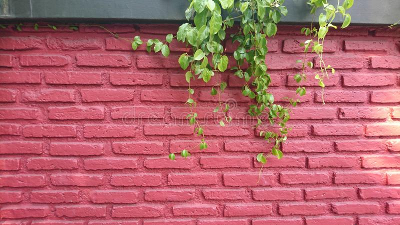 RED orange brick wall concrete background  old vintage  horizontal architecture dark wallpaper texture construction building for stock images