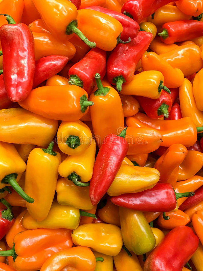 Red And Orange Capsicum In Vegetable Market. Display stock photography
