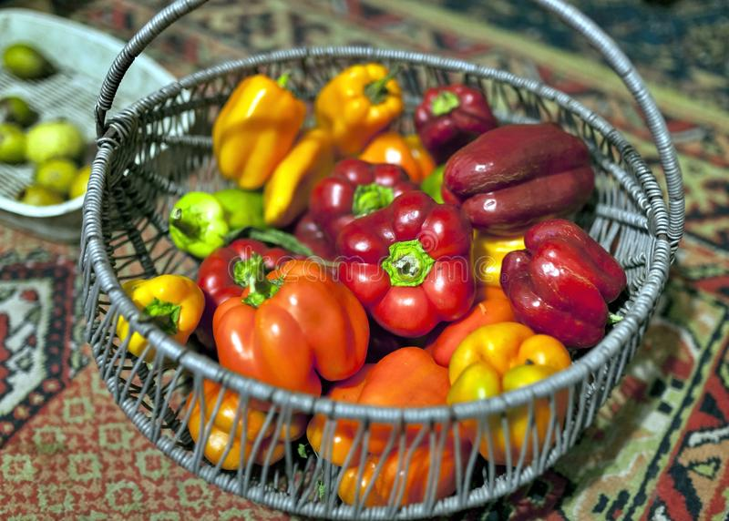Red and orange peppers grown in the garden, soft focus stock photos