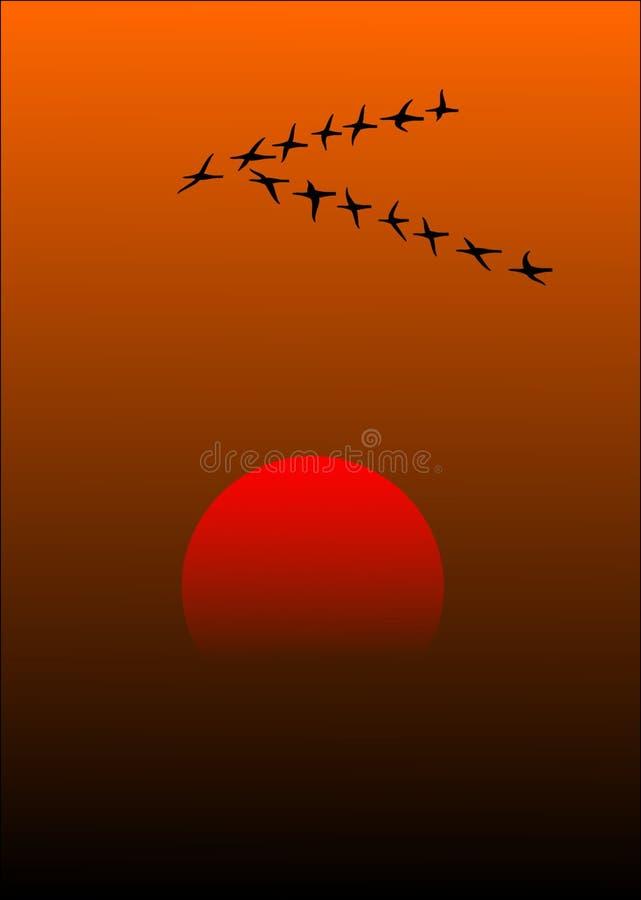 Red, Orange, Sky, Atmosphere stock photos