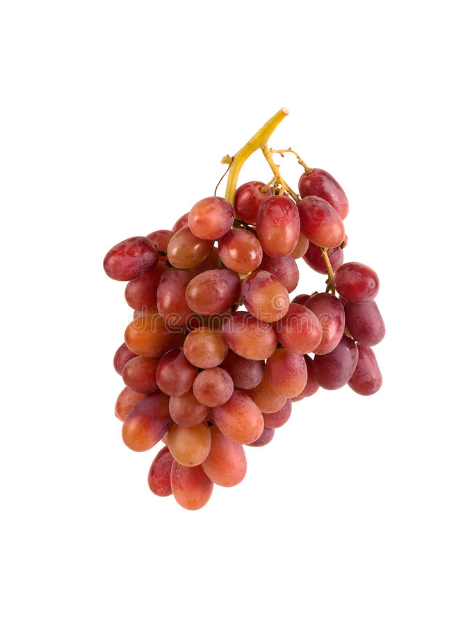 Red Organic Grapes on The Vine royalty free stock photos