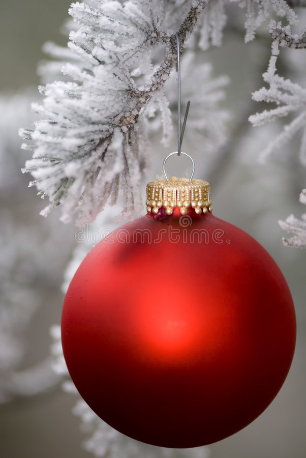Free Red Ornament 3 Royalty Free Stock Images - 1702649