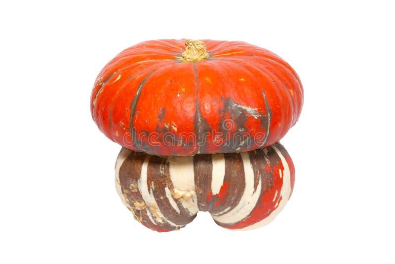 Red ornamental pumpkin