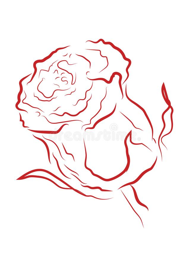 Red outline rose with different stroke effects. Red outline rose with different stroke effects and shapes vector illustration