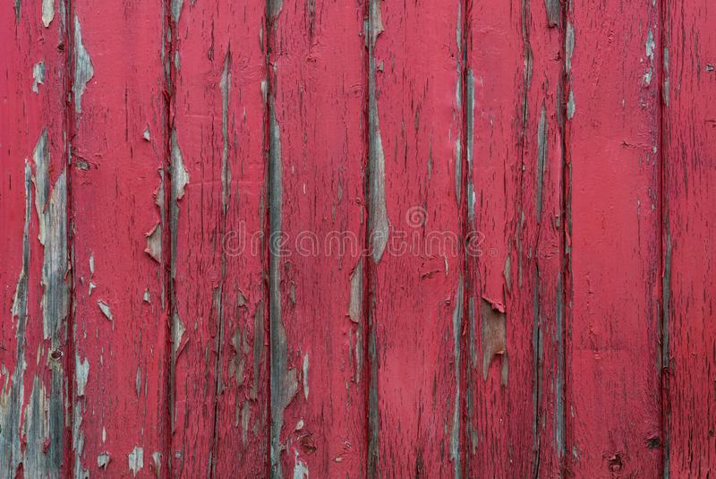 Red Paint Peels Off Wood Slat Wall royalty free stock image