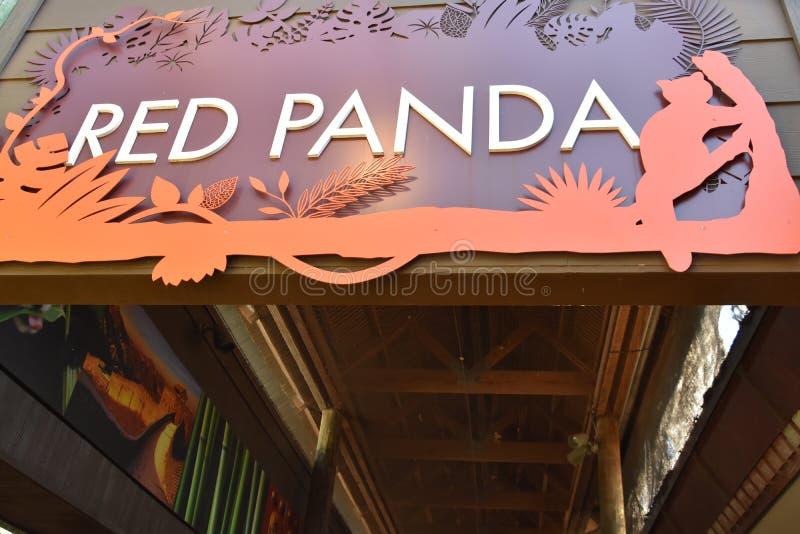Red Panda Exhibit allo zoo di Houston, all'interno di Hermann Park, a Houston, Texas fotografia stock