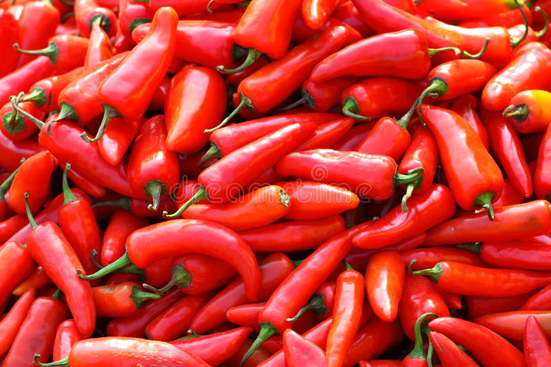 Red paprica in traditional vegetable market. royalty free stock photography