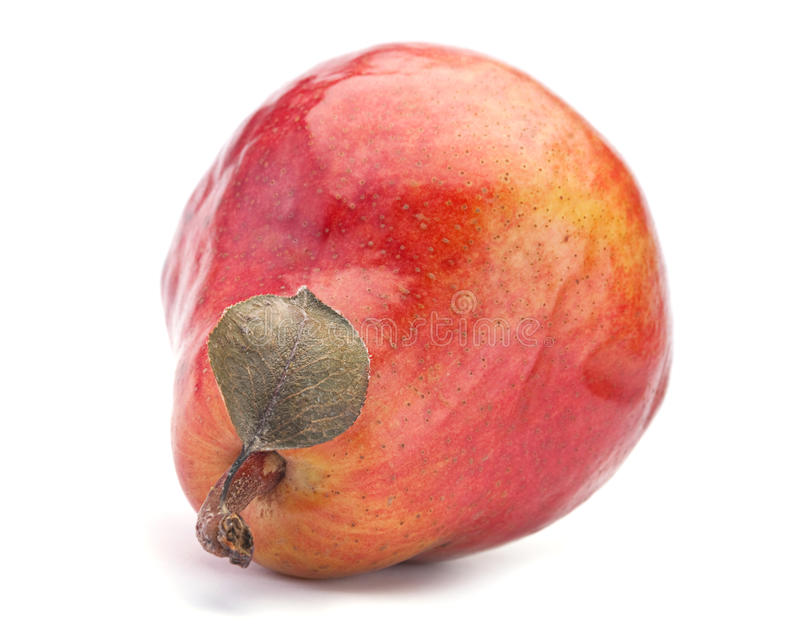 Download Red pear stock photo. Image of white, nobody, shadow - 18390638