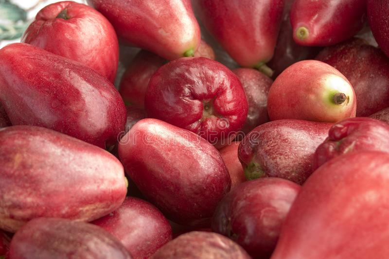 Download Red Pear Fruit stock image. Image of pear, seed, good, savory - 898233