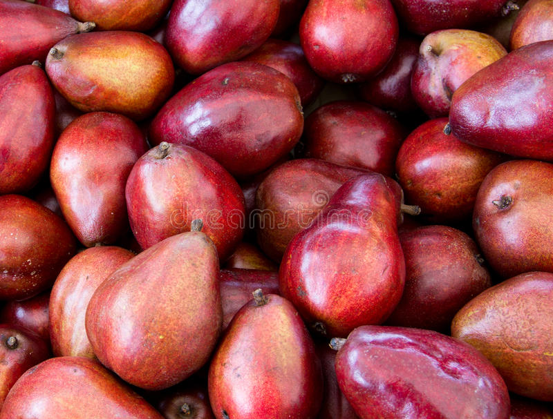 Download Red pears on display stock image. Image of organic, pear - 20609369