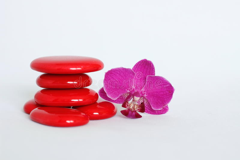 Red pebbles arranged in zen lifestyle with a dark pink orchid on the right side on white background. Pebbles arranged in zen lifestyle with a dark pink orchid on royalty free stock images