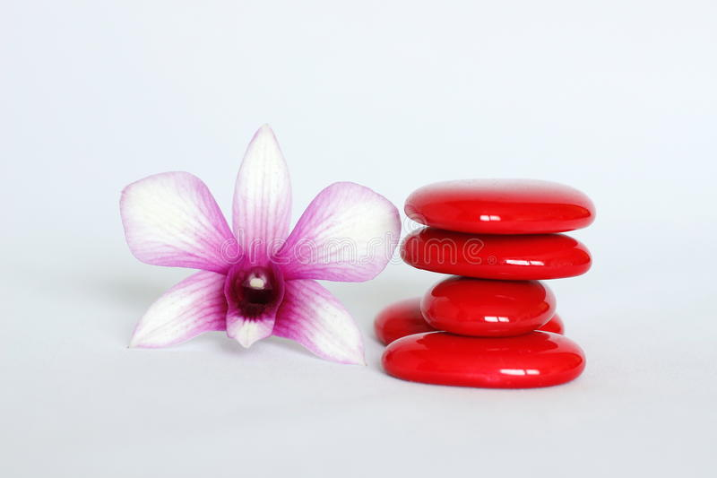 Red pebbles arranged in zen lifestyle with an orchid on the left side on a white background. Pebbles arranged in zen lifestyle with an orchid on the left side on stock image