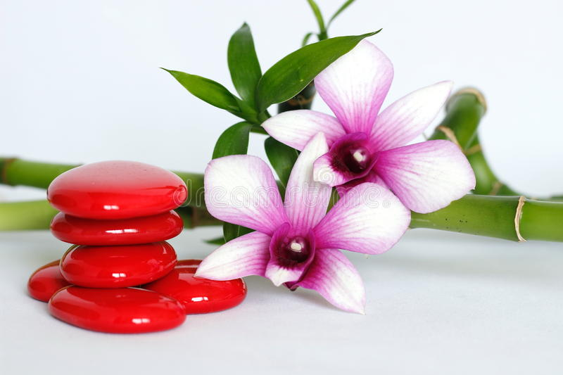 Red pebbles arranged in zen lifestyle with two bicoloured orchids on the right side of the twisted bamboo set at the back all on a. Red pebbles arranged in zen stock photo