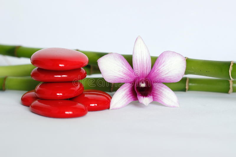 Red pebbles arranged in zen lifestyle with a two-tone orchid on the right side of the bamboo posed behind the whole on a white bac royalty free stock photo