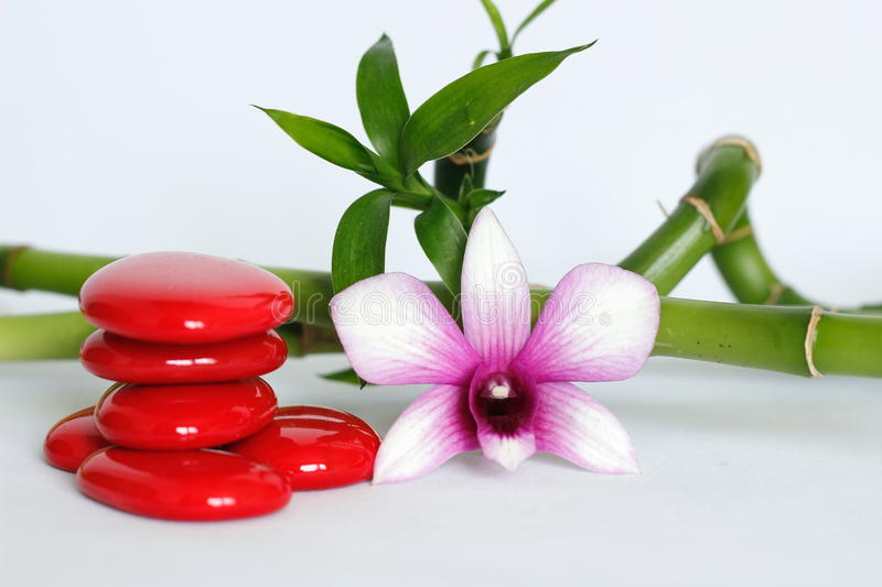 Red pebbles arranged in Zen lifestyle with a two-tone orchid on the right side of the twisted bamboo set behind the whole on a whi. Pebbles arranged in Zen stock photo