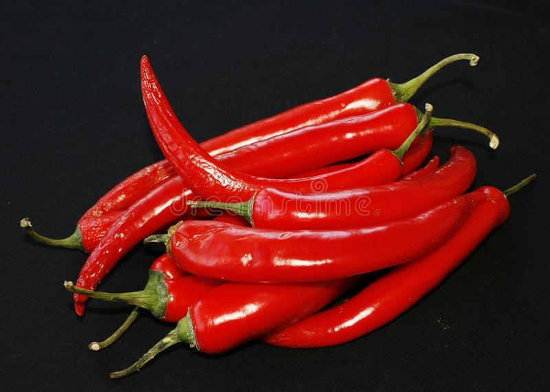 Download Red pepper stock photo. Image of food, organic, chilli - 13343760