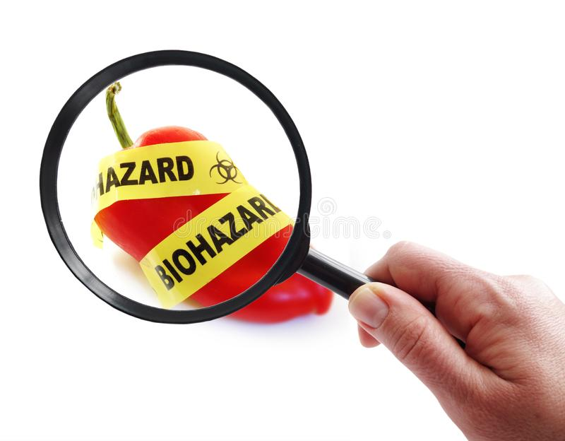 Food safety concept. Red pepper with bio-hazard tape and magnifying glass.food safety concept royalty free stock images