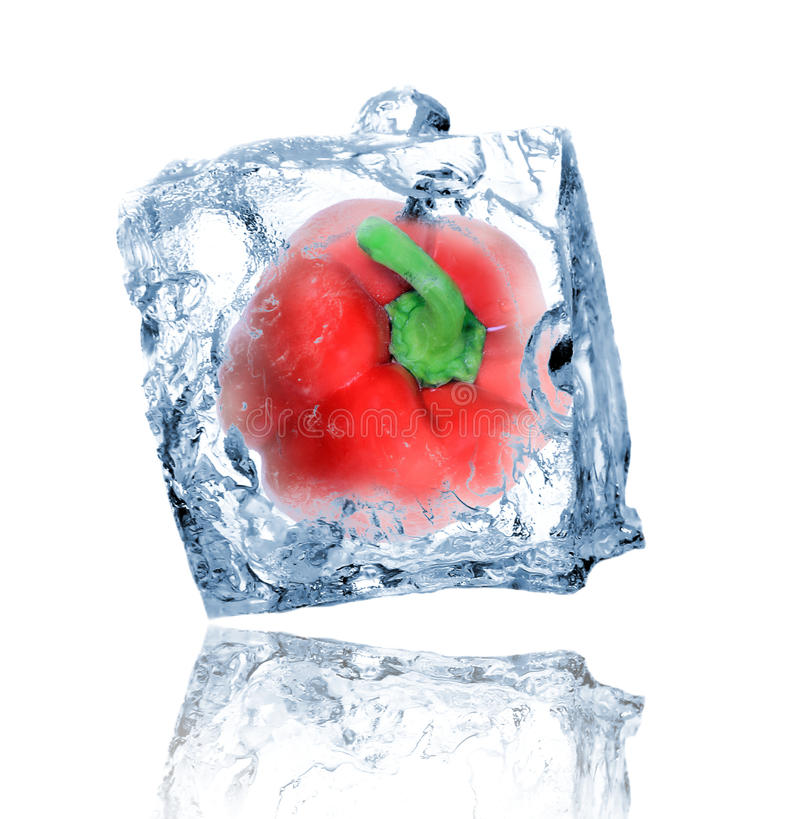 Red pepper in ice cube stock photo