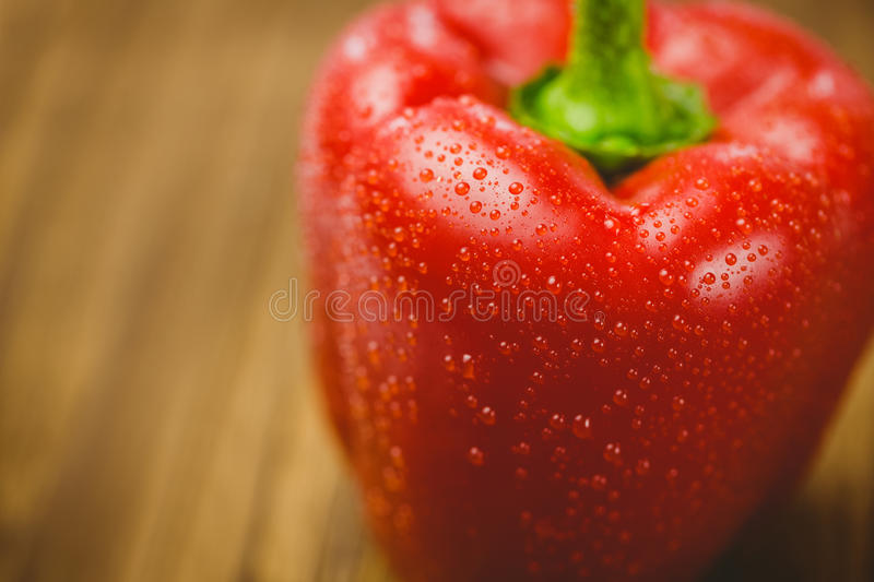Red pepper with water drops stock photo