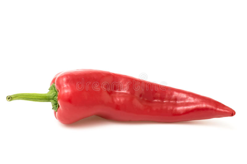 Red pepper on white stock photo