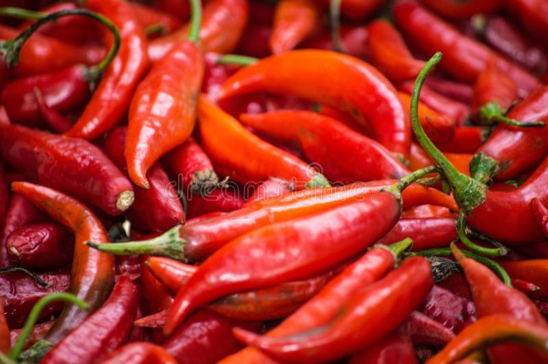 Red peppers in closeup, amazing and healthy composition stock images