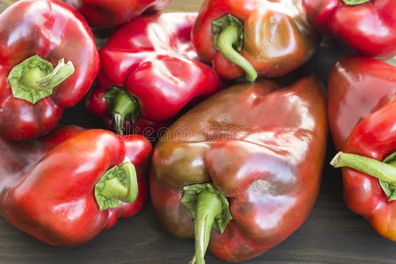Red Peppers Closeup stock image