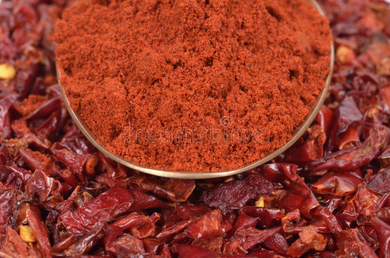 Red Peppers dried royalty free stock photos